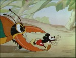 Mickey's Garden © Walt Disney